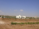 Private Farm Madaba